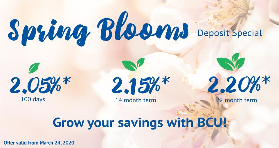 BCU Spring Blooms deposit special